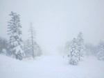 吹雪の西森山