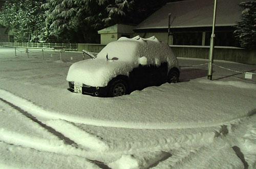 雪に埋もれたMINI