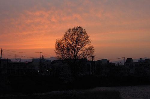 夕顔瀬橋からの眺め