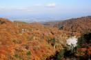 松川大橋から見た松川の紅葉