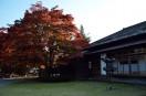 盛岡中央公民館と紅葉