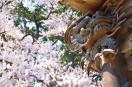 報恩寺の彫刻