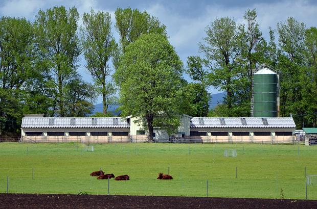 東北農業研究センター