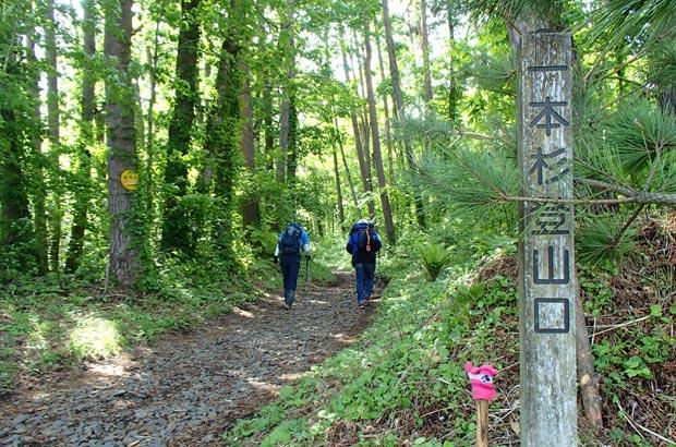 姫神山 一本杉登山口