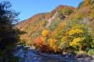 葛根田渓谷の紅葉