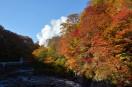 紅葉の後ろに地熱発電所の蒸気が見えた